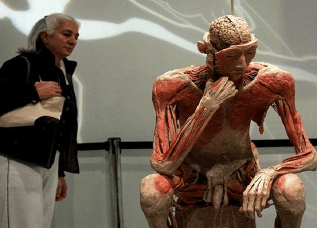 torino mostra human body