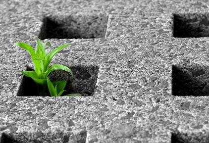 Cementificazione - foto di alternativasostenibile.it