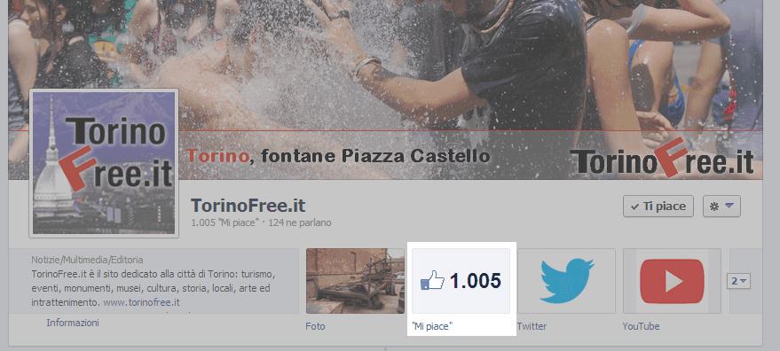 Mille fan seguono TorinoFree su Facebook