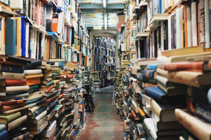 Torino World Design Library nel 2024, prima biblioteca interamente dedicata al design